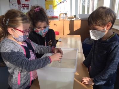 Naturwissenschaftliche Bildung an der Marienschule